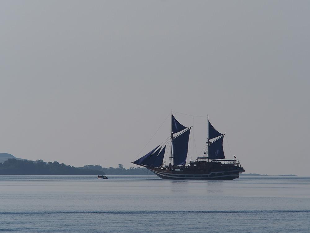 スラウェシ島発祥の伝統木造帆船「ピニシ」が今でも活躍しているフローレスの海。