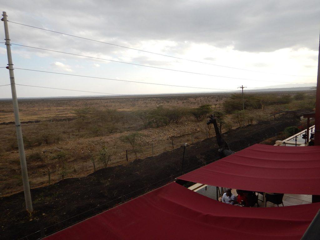 ホテルの目の前はナイロビ公園