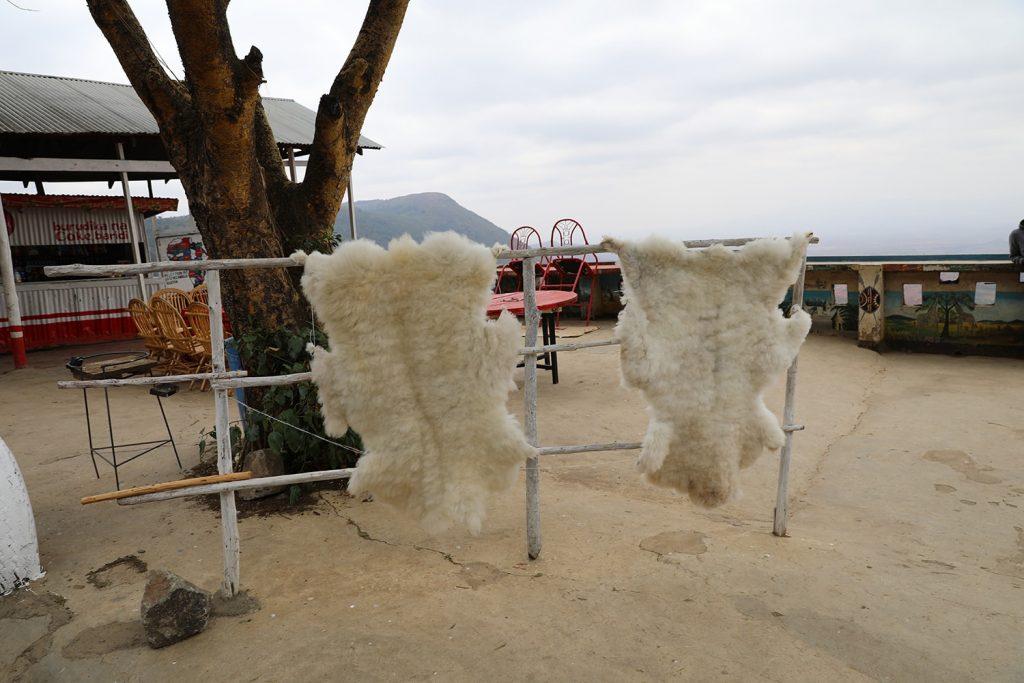 お土産に売っている羊の皮とおぼしきもの