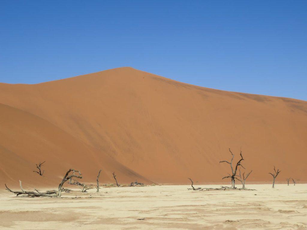 高低差世界一の砂丘・ビッグダディ