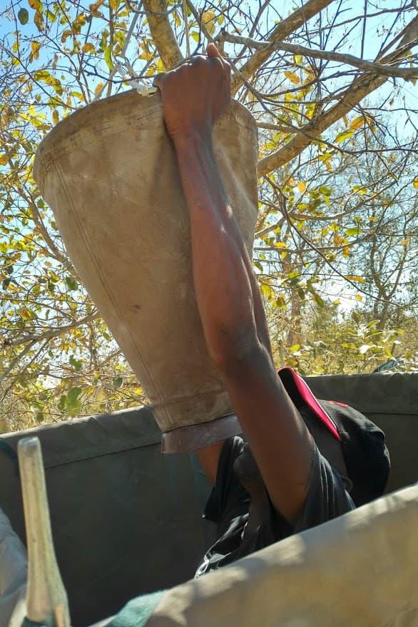 お湯を汲んだバケツを樹上にロープで吊るします。