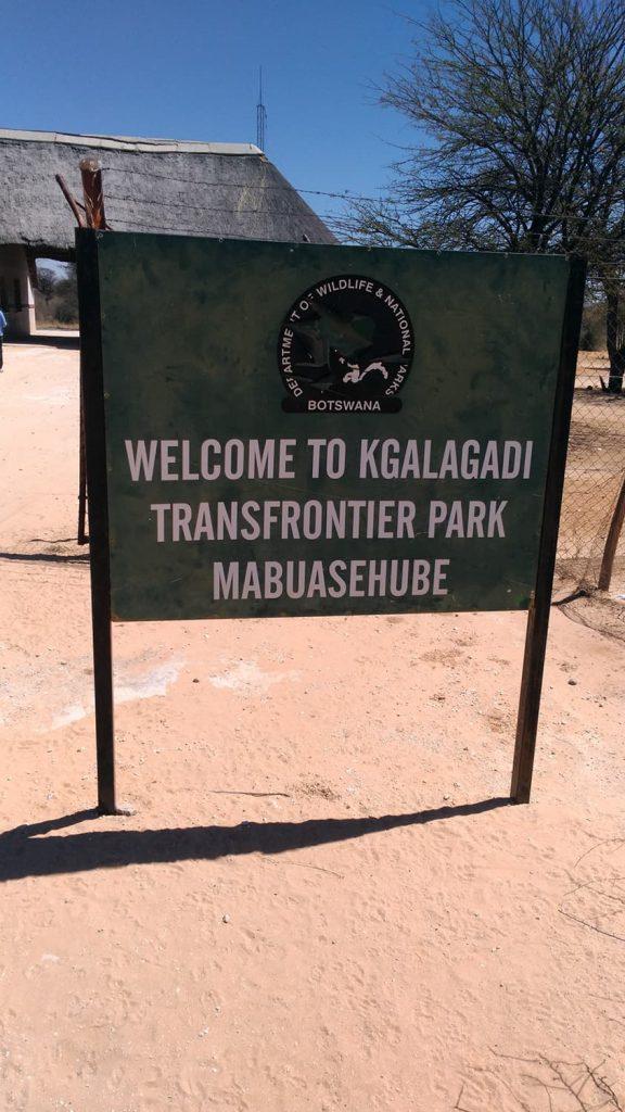 カラハリ・トランスフロンティア公園(マブアシュベエリア)