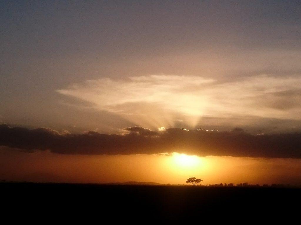 サファリを終えてロッジに戻る途中に見た夕日にうっとり。