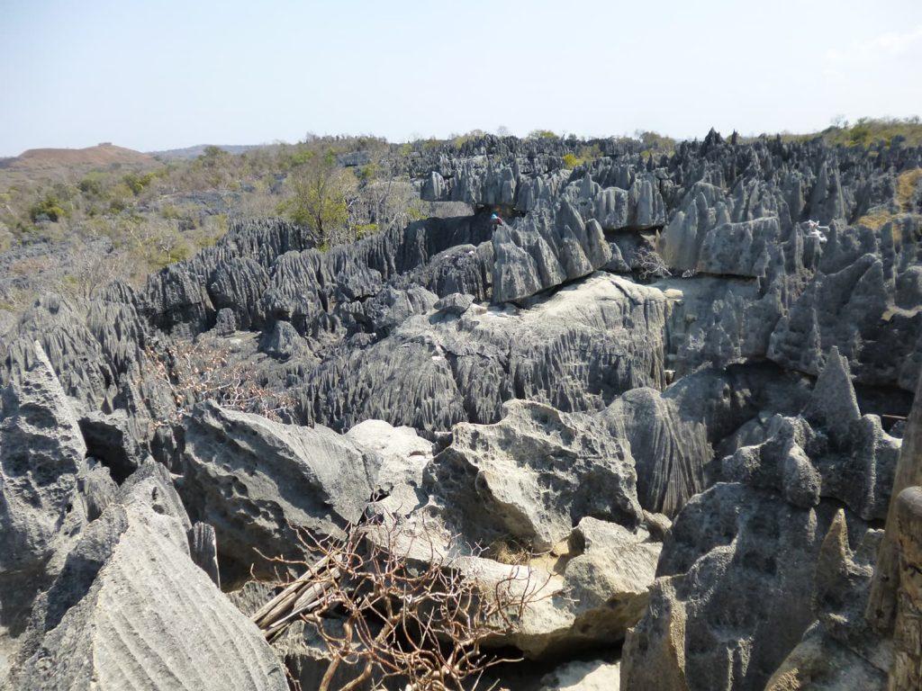 石灰岩が浸食して作り出された無数の尖った岩が広がります。