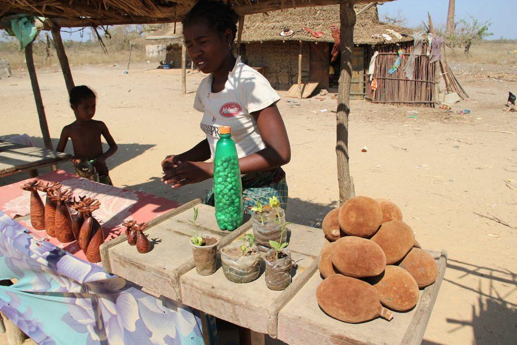 バオバブの並木道ではバオバブの実や苗、置物などが売られていました。