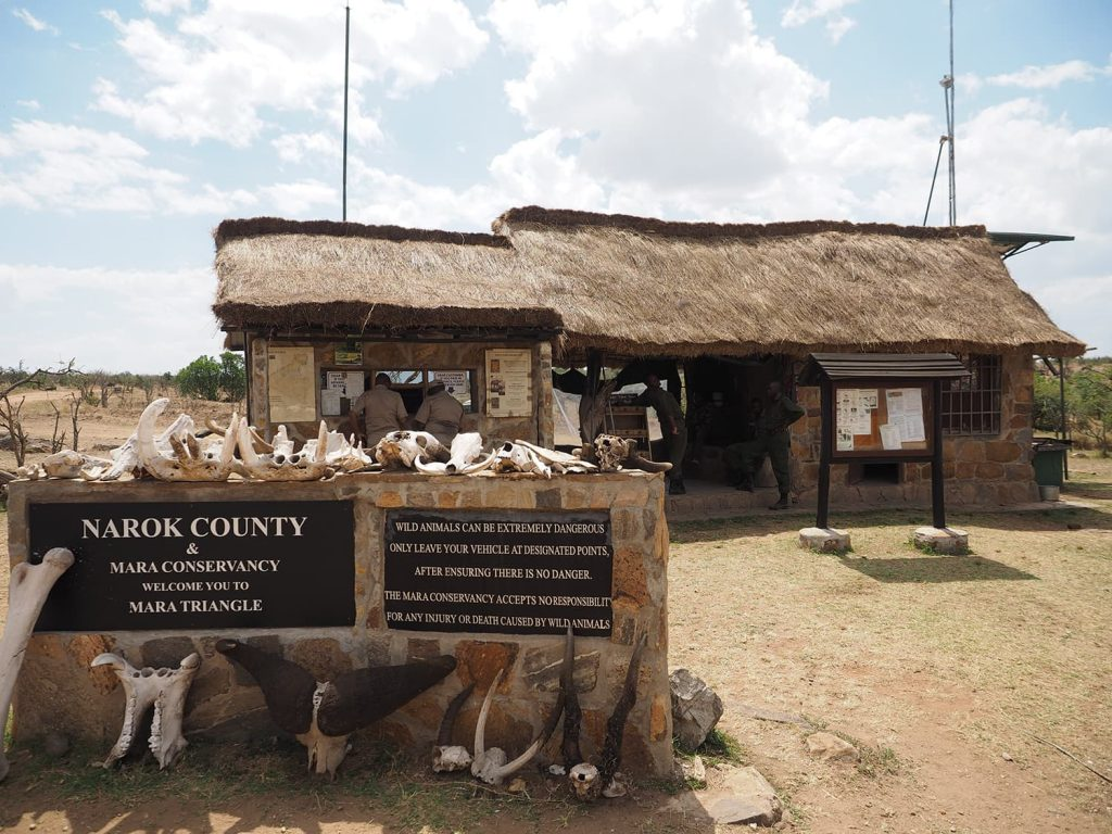 ナイロビで1泊した後、約7時間の長距離ドライブを経て、マサイマラ国立保護区の西側『マラ・トライアングル』へ到着。