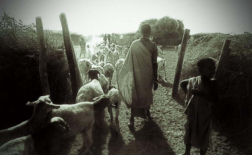 Africa Deep!! 66 何もかもが新鮮だった35年前の初めてのアフリカ旅行