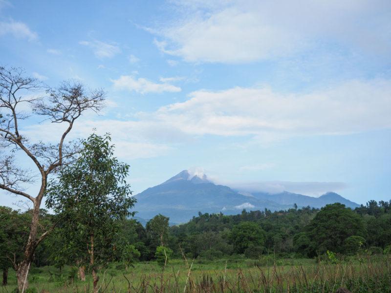 翌朝にははっきりとメルー山を見る事が出来ました。高さ4,562メートル。なかなかの迫力です。