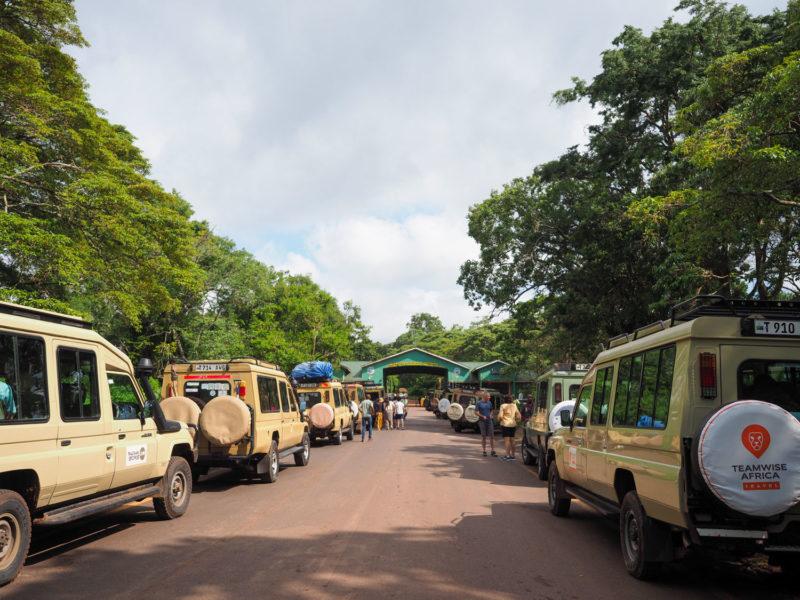 ンゴロンゴロの公園入口には50台以上のサファリカーが連なっていました。クリスマス休暇でたくさんの観光客が訪れています。