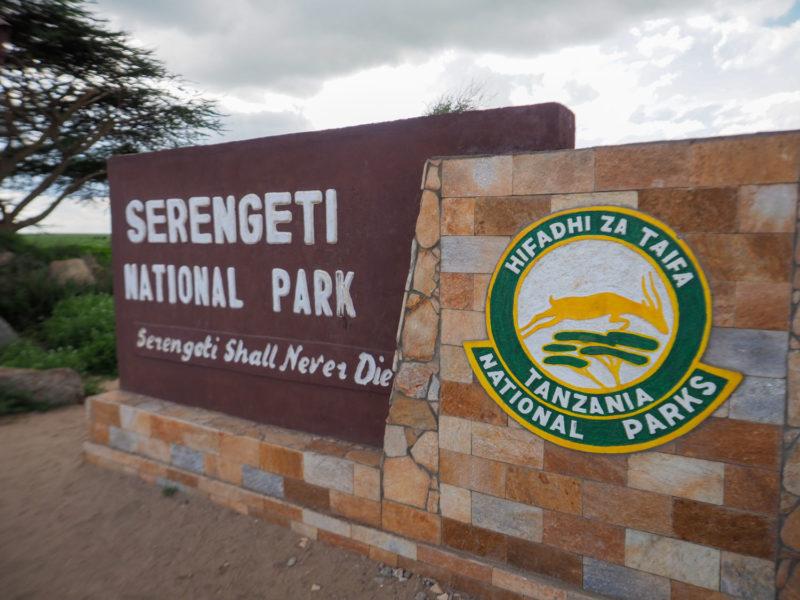 走りに走って、ようやくセレンゲティに到着。Serengeti shall never die, 『セレンゲティは滅びず』です。