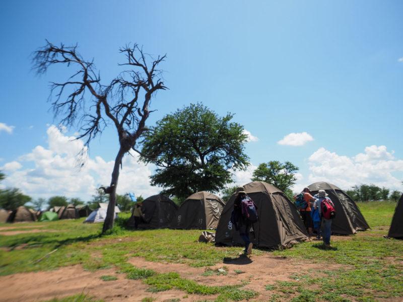 昼過ぎ、キャンプサイトに戻ってきました。テントもすっかりホームです。