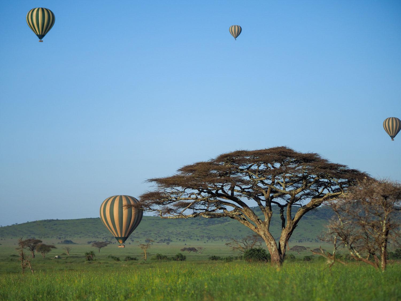 お正月はいつもより気球の数が多かった気がします。