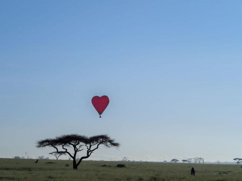 ハネムーン用のハート形気球。ちょっとシュールです。