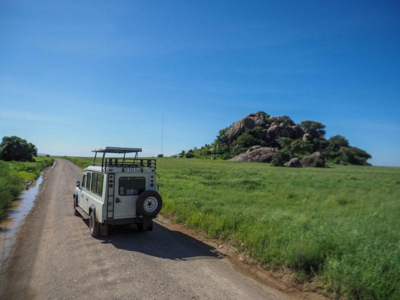 セレンゲティを後にして、来た道を戻ります。草の海に点在するコピエ(岩山)。セレンゲティらしい景色です。