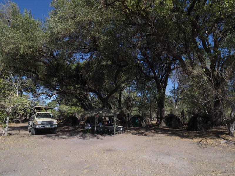 モレミのキャンプ。隣のサイトとはかなり離れており、自然の中でのプライベート感が味わえます