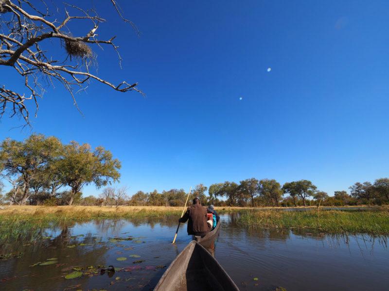 クワイ川でモコロクルーズ。水量が少なく、水鳥もゾウやカバも残念ながら少なかったです