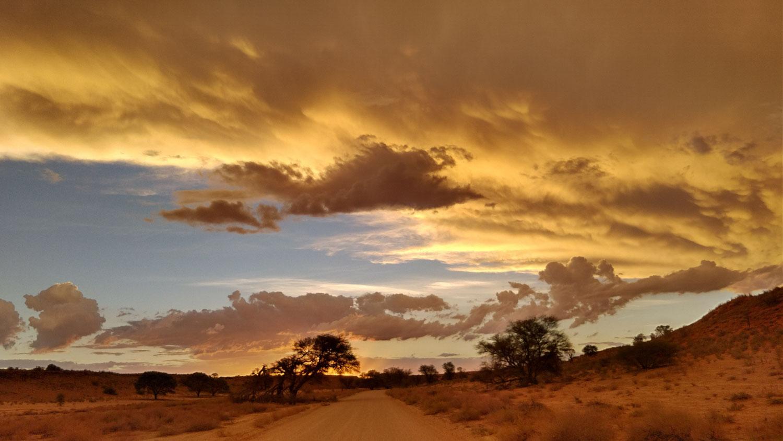 カラハリの空~黄金のサンセット