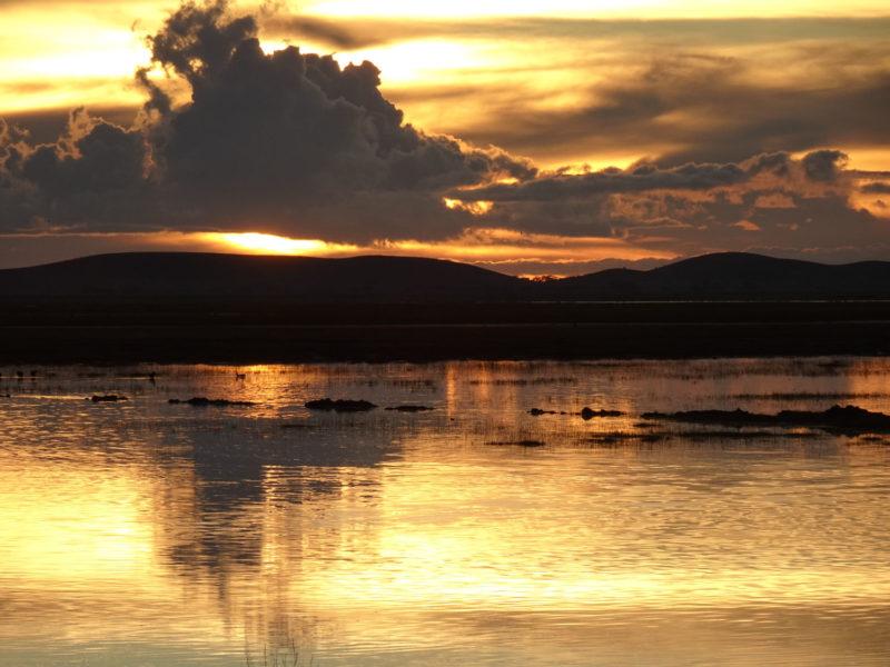雨で水没した草原に夕日が反射して美しい