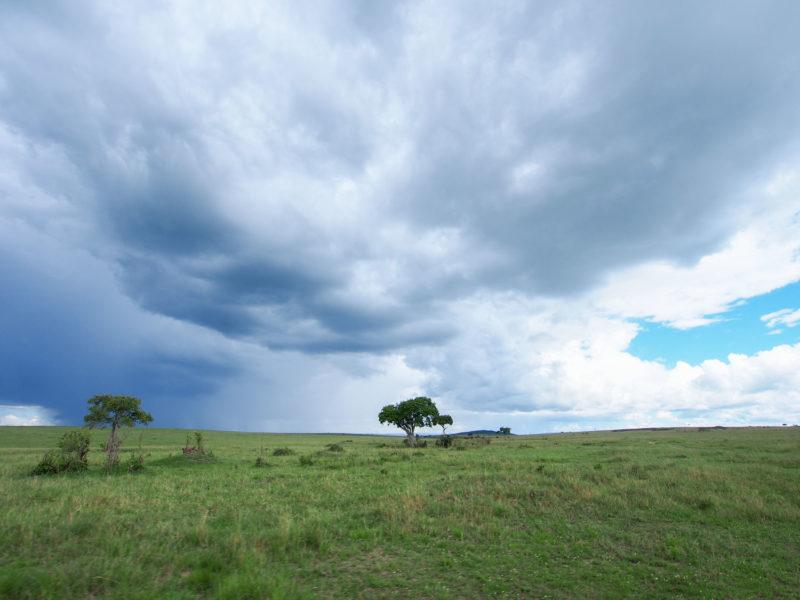左は雨、右は晴れ。こんな景色を見れるのも雨期ならではです。