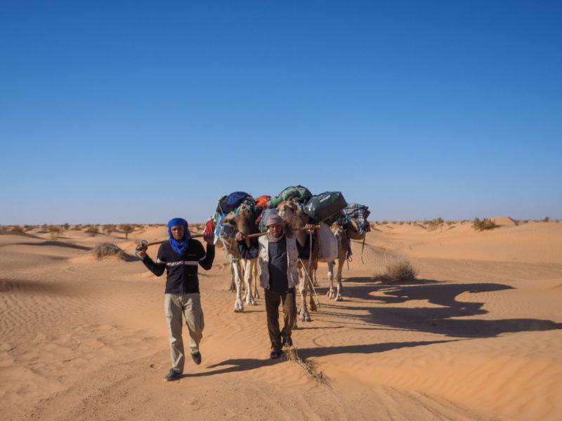 頼れる砂漠の男たち。彼らとラクダたちなしでは、この旅は実現できません。