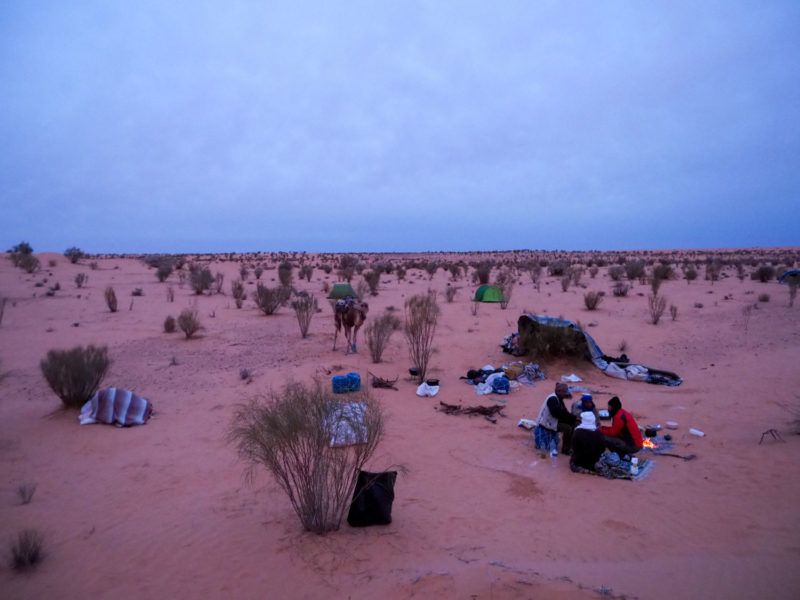 そして、1日の終わりには再び砂漠に包まれ眠ります。