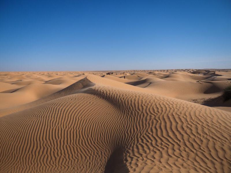 この広大な砂の海の向こうに、目指すゴールのオアシス「クサールギレン」が近づいてきます。