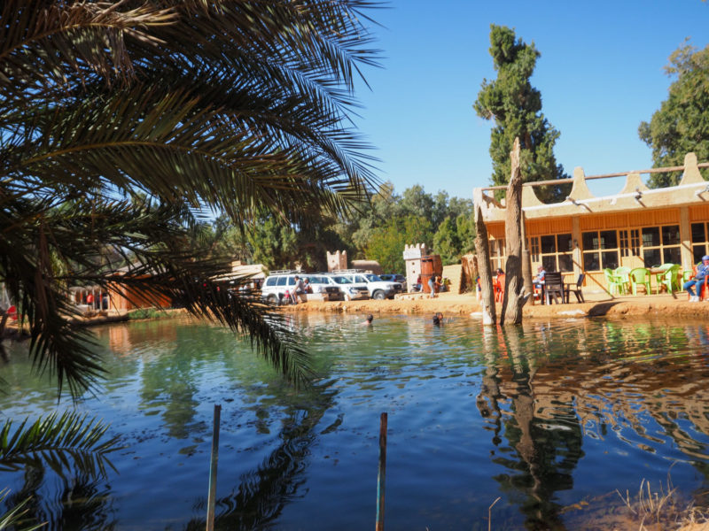 この湧き出る泉は温泉。砂漠の汗を洗い流して泳ぐことも可能です。(水着着用)