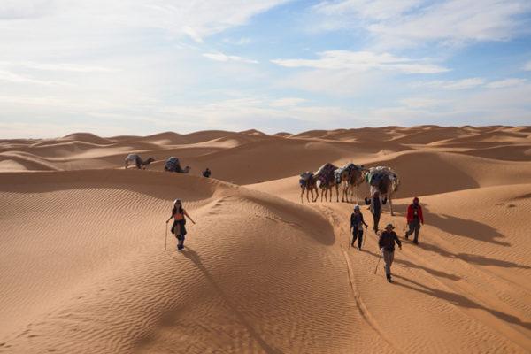2020.2.7発 チュニジア ラクダと歩く砂漠旅 10日間