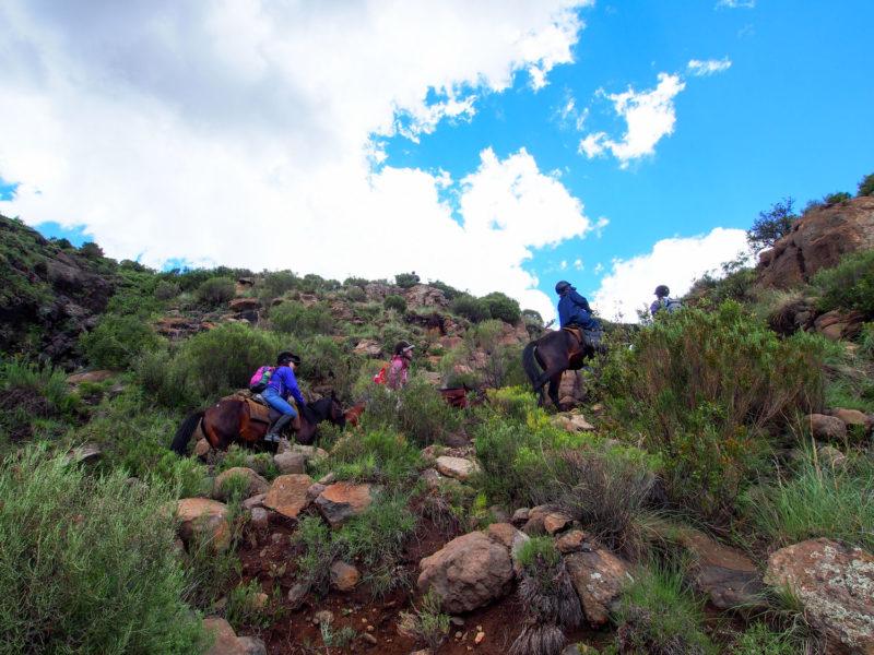 時にはかなり急な崖を上ったり。高さが苦手な人は少し怖いかもしれません。