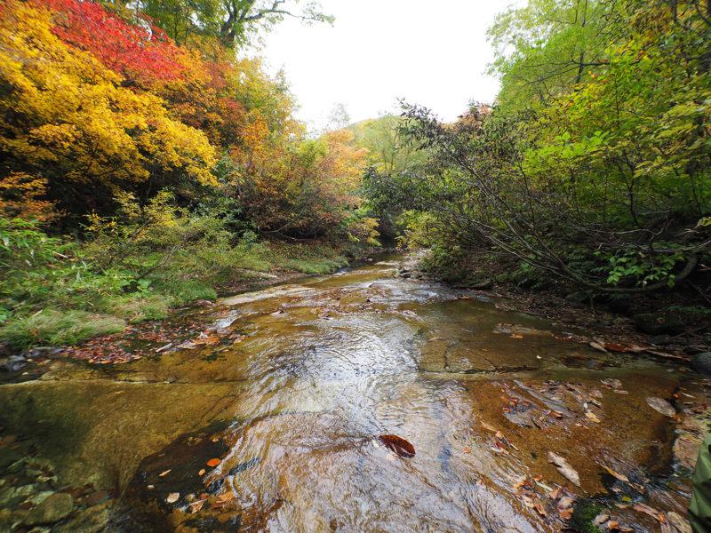 紅葉が美しい津軽湯ノ沢を歩く